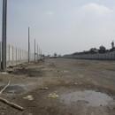 エコシュリンプ: 壁の内側では何かが起こりつつあるようだ-ATINA自社工場建設(2)