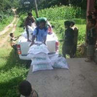 東ティモール: 米の緊急支援を実施