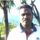 東ティモール: 生産者が振り返る独立10年