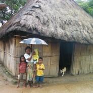 東ティモール:新年と雨季とコーヒー予報