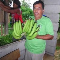 KF研修農場からネグロス東州バナナ産地L.カンダボンでの交流~生活クラブ関西ネグロス交流ツアーより~
