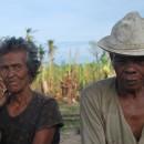 台風30号ヨランダによるパナイ島バナナ生産者の被災状況をお伝えします(第4報)