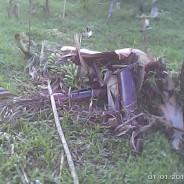 台風30号ヨランダによる被害状況報告~ネグロス西州~(第6報)