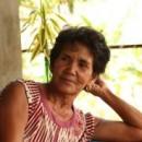 パナイ島のバランゴンバナナ栽培の先駆者は・・・~ワニト&ロサリンダ夫妻~