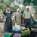 14/7/23 パレスチナ現状報告(UAWCからの聞き取り)