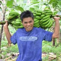 【公開セミナー】    バランゴンバナナの民衆交易はどこまで生産者の自立に寄与できるのか ~フィリピン産地調査報告~