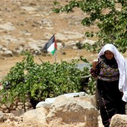 【パレスチナからのアピール】スシア(Susia)村が、完全破壊と強制的退去の危機にさらされています。