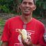 バナナニュース261号:バランゴンバナナ産地紹介 ~北ルソン~