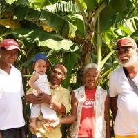 バナナニュース265号:バランゴンバナナ産地紹介 ~パナイ島~