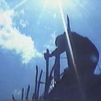 ビデオ『苦い砂糖の島』(1986年)