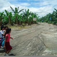 【PtoP NEWS vol.11/2017.2 特集】バナナ・プランテーションの現場から ~フィリピン・ミンダナオ島現地訪問で見えたもの~