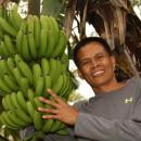 【バナナニュース274号】バランゴンバナナ生産者紹介 ~西ネグロス州パタグ村のレニボイさん~