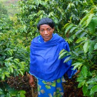 【PtoP NEWS vol.23/2018.02】女性たちがつくる未来への希望~ルワンダのコーヒー農園から~