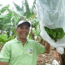 【バナナニュース290号】ネグロス島・カンラオン市プラ村のマルコス・アビラさん