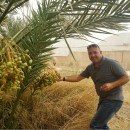 パレスチナの農民のために、オリーブオイルの評価を高めたい!   イッサ・シャトラさん(アルリーフ社副社長)fromパレスチナ(PtoP NEWS vol.32/2019.06 より)
