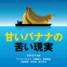 【バナナニュース310号】書籍のご紹介:『甘いバナナの苦い現実』(石井正子編著)