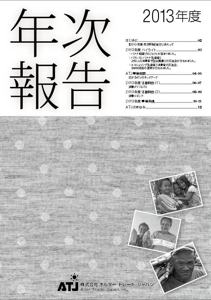 2013年年次報告
