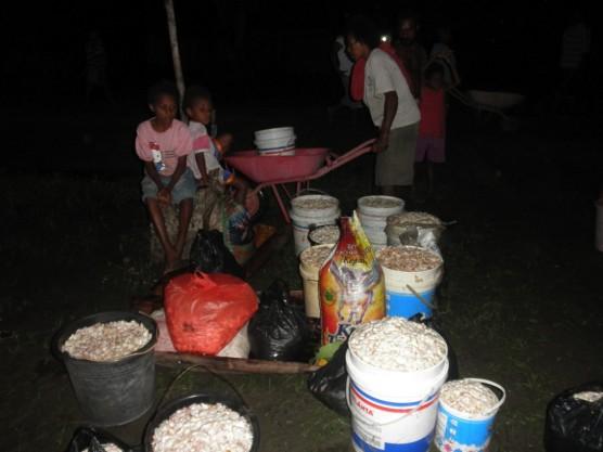カカオの買い付けを深夜まで待っている家族