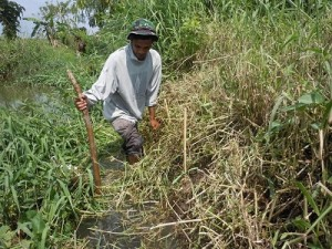 まずは川沿いの雑草を刈り取ってから・・・