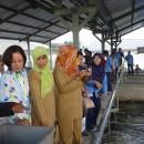 インドネシアのATINA社でBMW技術学習会が開催されました。