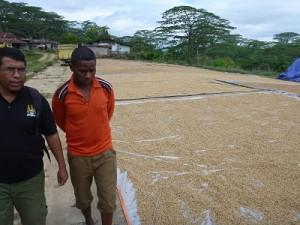 乾燥工程での難しさを共有するタロ加工所責任者のジュリオさん(右)とATTのエバンさん(左)