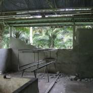フィリピン・ボホール島 地震被災救援レポートその3 ~バランゴン生産者の状況報告②~