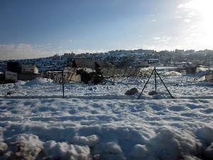 雪で壊されたビニールハウス(写真はUAWCのフェイスブックより)