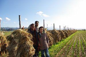 収穫後の田んぼで(イルルはコメも作ります)。