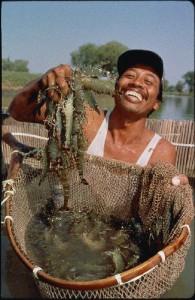 コディルさん:イルルさんの池で15年間養殖池の管理の仕事をしています。