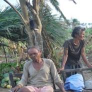 2013年フィリピン・ボホール島地震、台風30号被災及び支援状況について現状のまとめ(スライド)
