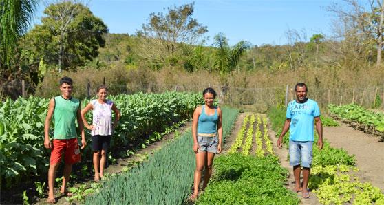アグロエコロジー:ブラジル・マトグロッソ州