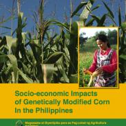 フィリピン最高裁、遺伝子組み換えナスの栽培実験禁止と新規承認一時停止を決定