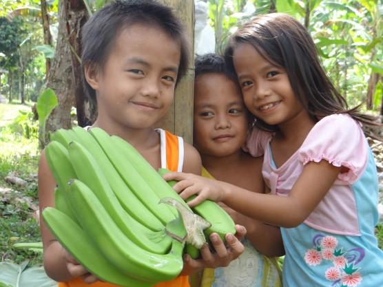 バランゴンバナナ集荷中、集荷トラックの付近で遊ぶツピの子供たち