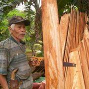 木材も配布されました。