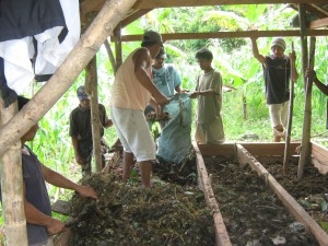 ミミズ堆肥の材料を準備(CBSFA)