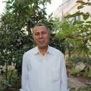 緊迫するパレスチナ情勢、UAWC職員ファラージ氏再拘禁