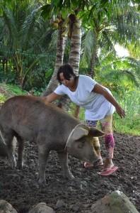 豚の世話をするアナさん