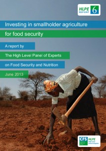 Committee on World Food Security (CFS) Investing in smallholder agriculture for food security