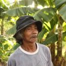 【バナナニュース232号】台風の後、豚と野菜で生活をつなぎました。 ~ホノラト・アグスティノさん、パナイ島カーレス町~