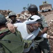 パレスチナ自治区でのイスラエルの暴力行為がエスカレートしています~UAWCからの近況報告:2014年9月~