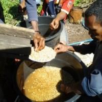 東ティモールから、今年収穫されたコーヒー豆が無事に日本に届きました。