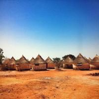 マリで国際アグロエコロジー・フォーラム