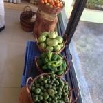 野菜も販売