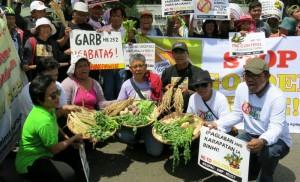 MASIPAG: ゴールデンライスに反対