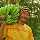 【バナナニュース243号】マカオさんは今!~日本での交流が役立っています~