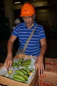 日本でバナナの状態を確認するジェイムスさん