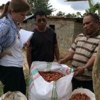 東ティモールのコーヒー産地で、生産者が専門家とポルトガル語で直接技術交流をしました。
