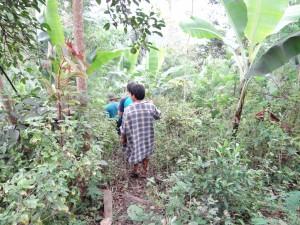 北ルソン・ソウミル村。バランゴンバナナの圃場に行くには山道を歩きます。