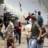 【緊急アピール】イスラエルによる、パレスチナ人に対するテロ行為を止めて下さい!