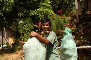 天秤棒を使ってバナナを運ぶ生産者(東ネグロス州)